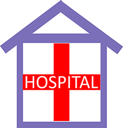Hospital in the Home